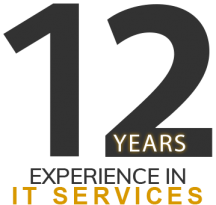 12 year experience